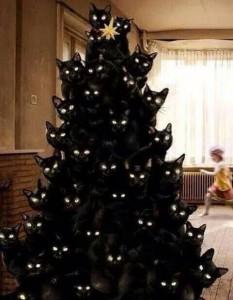 Kitty Merry Christmas!