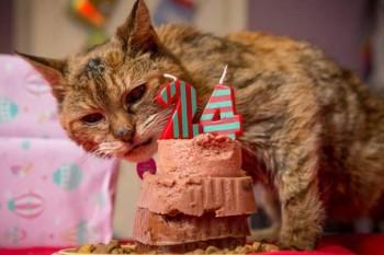 Poppy celebrates her 24th birthday.