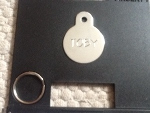 ID tag for a cat with split ring