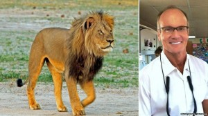 Cecil the lion and dentist Walter James Walker